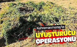 Kahramanmaraş'ta Uyuşturucu Opersayonu