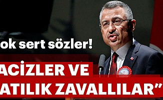 Cumhurbaşkanı Yardımcısı Oktay'dan çok sert sözler!
