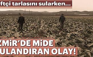 İzmir'de mide bulandıran olay!Çiftçitarlayı sularken...