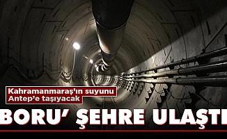 Kahramanmaraş'ın suyunu Antep'e taşıyacak 'boru' şehre ulaştı!