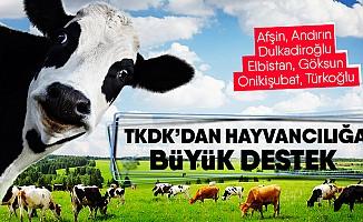 TKDK'dan Hayvancılığa Önemli Destek