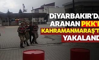 Diyarbakır'da Aranan PKK'lı Kahramanmaraş'ta Yakalandı