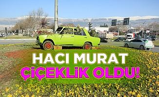 Hacı Murat çiçeklik oldu!