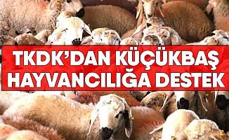 TKDK'DAN Küçükbaş Hayvancılığa Destek