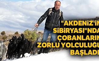 """""""Akdeniz'in Sibiryası""""nda çobanların zorlu yolculuğu başladı!"""