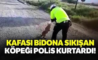 Kafası bidona sıkışan köpeği polis kurtardı