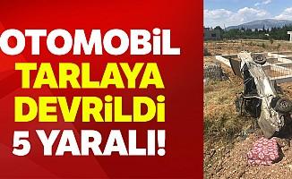 Kahramanmaraş'ta otomobil tarlaya devrildi: 5 yaralı