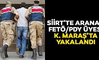 Siirt'te Aranan Fetö/Pdy ÜyesiKahramanmaraş'ta Yakalandı