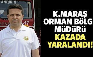 Kahramanmaraş Orman Bölge Müdürü kazada yaralandı!