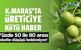 Kahramanmaraş'ta çiftçilere kötü haber!