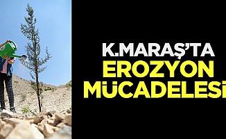 Kahramanmaraş'ta erozyon mücadelesi!
