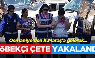 Kahramanmaraş'ta göbekçi çete yakalandı!