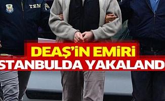 DEAŞ'in emiri İstanbul'da yakalandı!