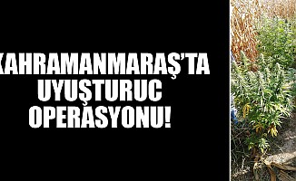 Kahramanmaraş'ta uyuşturuc operasyonu!