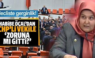 Mecliste mektup gerginliği! Habibe Öçal'dan CHP'li vekile 'Zoruna mı gitti?'