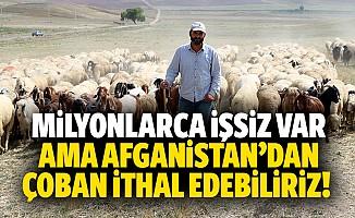 Milyonlarca işsiz var ama Afganistan'dan çoban ithal edebiliriz!