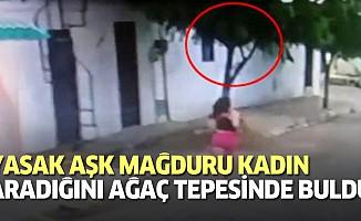Yarı çıplak adam aldattığı karısına ağaç tepesinde yakalandı