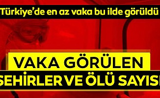 Türkiye'de en az vaka bu ilde görüldü
