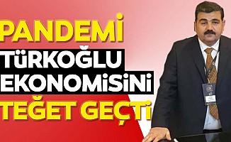Pandemi Türkoğlu ekonomisini teğet geçti