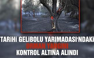 Tarihi Gelibolu Yarımadası'ndaki orman yangını kontrol altına alındı