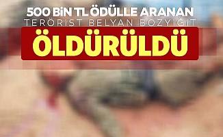 Bakanlık listesinde aranan terörist Belyan Bozyiğit etkisiz hale getirildi