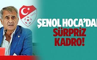 Şenol Güneş'ten sürpriz tercihler! A Milli Takım'da Macaristan ve Sırbistan maçı kadroları belli oldu