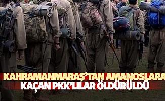 Kahramanmaraş'tan Amanoslara Kaçan Pkk'lılar Öldürüldü