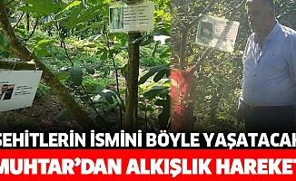 Köy muhtarı Yahya Karaoğlan'dan alkışlık hareket! Şehitlerin ismi ağaçlarda yaşayacak!