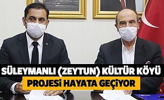 Süleymanlı (Zeytun) Kültür Köyü Projesi Hayata Geçiyor