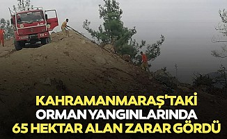 Kahramanmaraş'taki orman yangınlarında 65 hektar alan zarar gördü