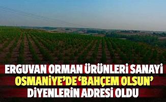 Erguvan orman ürünleri sanayi, Osmaniye'de 'bahçem olsun' diyenlerin adresi oldu