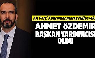 Ahmet Özdemir başkan yardımcısı oldu