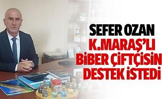 Sefer Ozan, biber çiftçisine destek istedi