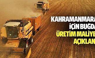 Kahramanmaraş için buğday üretim maliyeti açıklandı