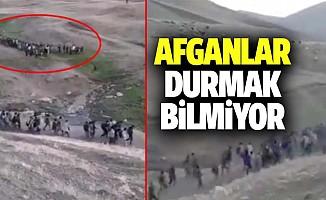 Afganlar Durmak Bilmiyor