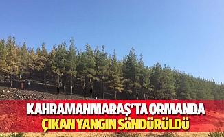 Kahramanmaraş'ta ormanda çıkan yangın söndürüldü