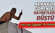 Adana'da Görenler Hayretlere Düştü