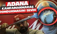 Adana Kahramanmaraş Dondurmasına Sevdi