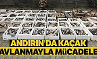 Andırı'nda kaçak avlanmayla mücadele