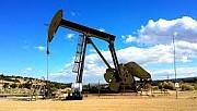 TPAO Kahramanmaraş'ta petrol arayacak